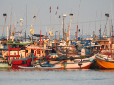 Sri Lankan fishing boats at sunrise
