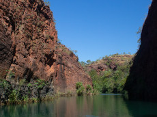 Boodjamulla (Lawn Hill Gorge) is a top birdwatching site during our 17 day outback birding tour