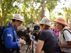 Small group birding tours & social events in Darwin with Luke Paterson